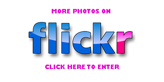 flickr-photos